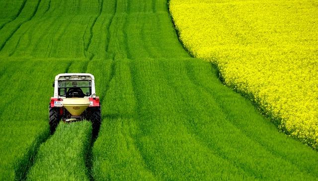 Jakie szyby dobrać do swojego ciągnika rolniczego?